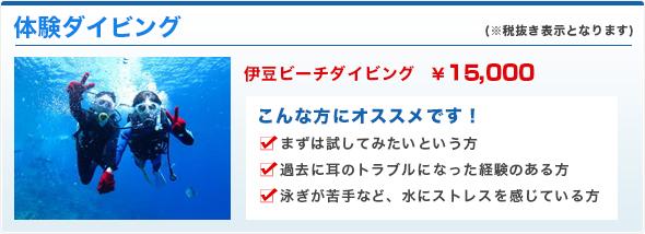 伊豆ビーチダイビング¥15,000