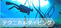 テクニカルダイバー